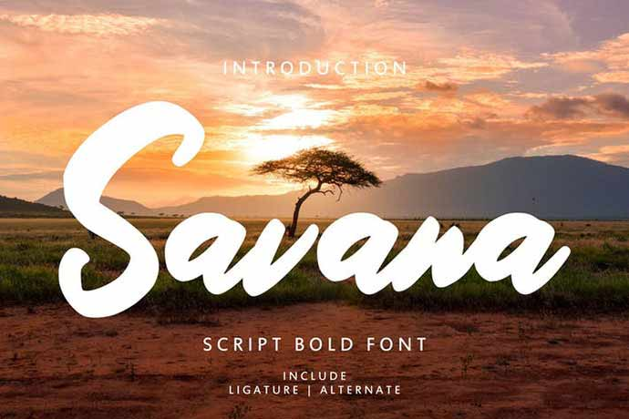 Savana-Script-Bold-Font - 52+ Wonderful Fonts for Calligraphy Logo Design [year]