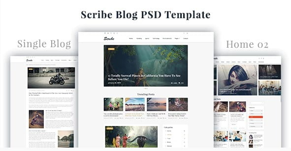 Scribe - 35+ Awesome One Page Creative Blogger Template [year]