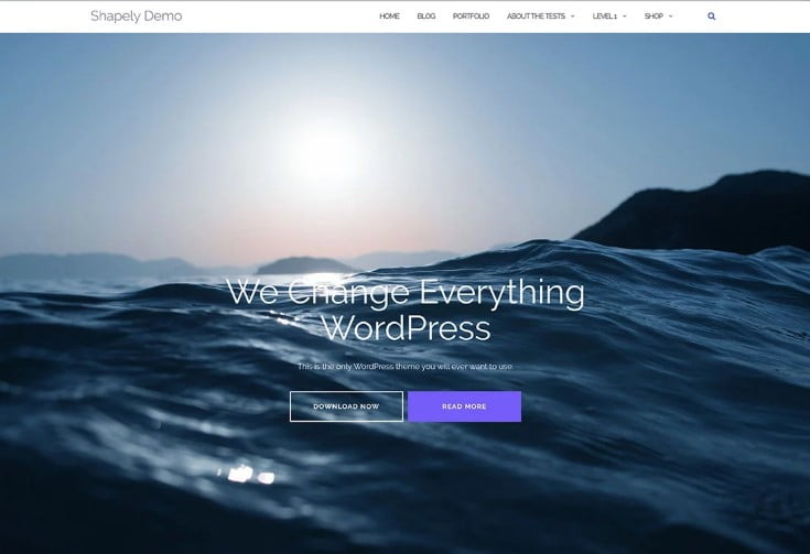 Shapely-WordPress - 60+ Best Free Responsive News Blogger Templates [year]
