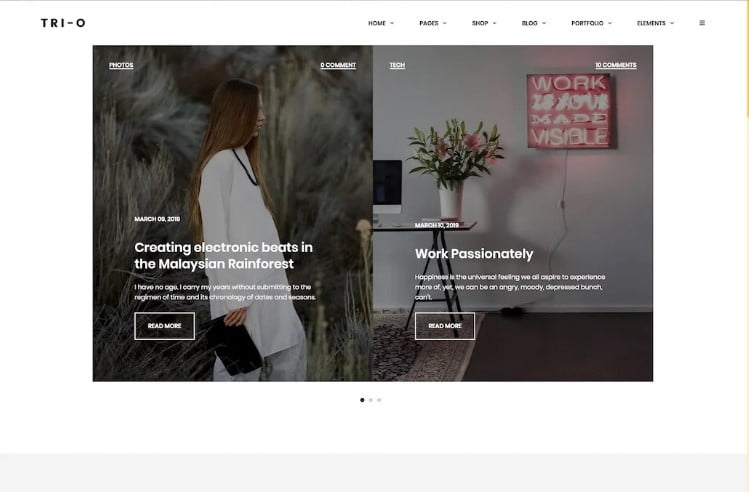 Tri-O - 35+ Best Responsive News Website Templates [year]