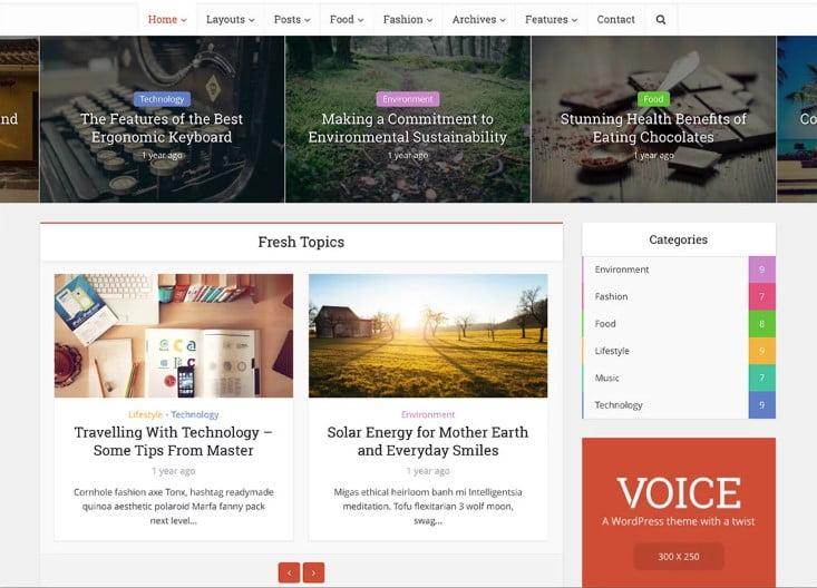 Voice - Top 60+ News Magazine WordPress Themes [year]