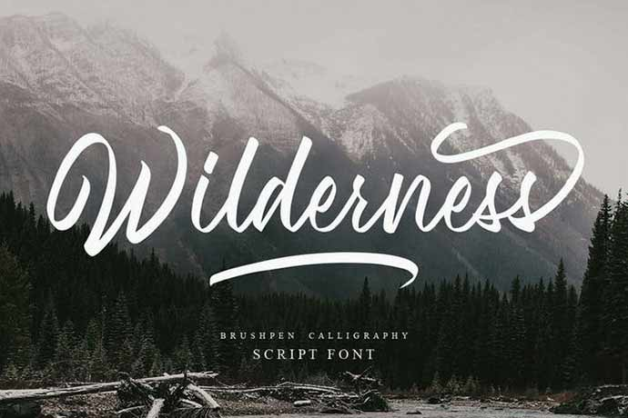 Wilderness - 52+ Wonderful Fonts for Calligraphy Logo Design [year]