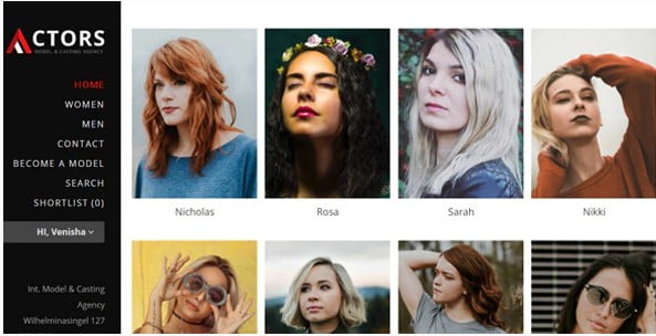 Actors - 25+ Awesome WordPress Themes For Feminine [year]