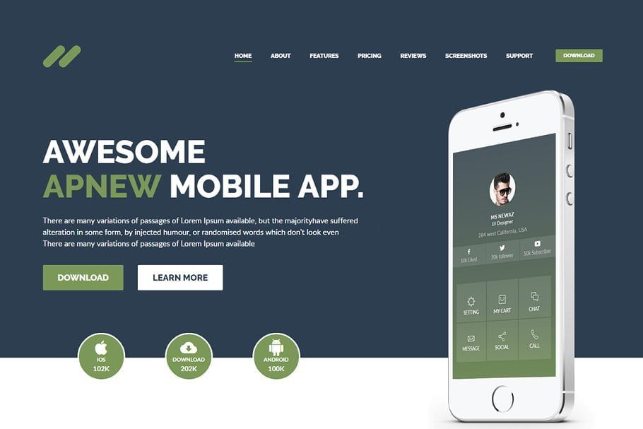 Apnew - 37+ Amazing Best WordPress Landing Page Themes [year]