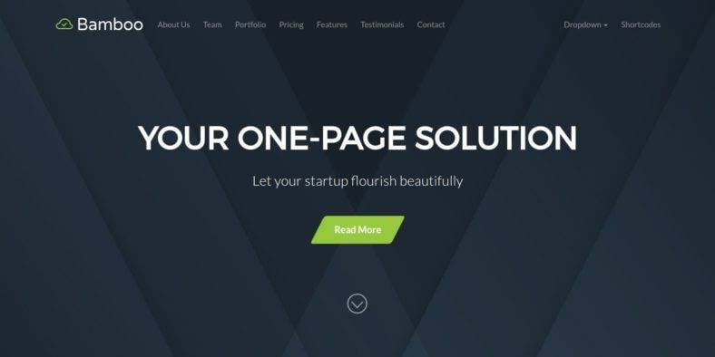 Bamboo - 36+ Best One Page Modern and Creative HTML Templates [year]
