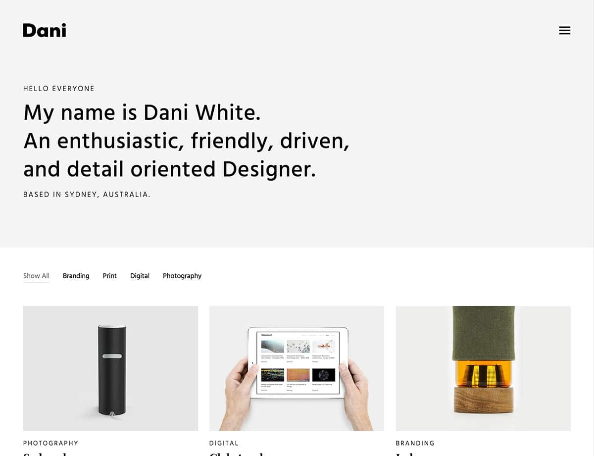Dani - 31+ Best Freelancers WordPress Themes [year]