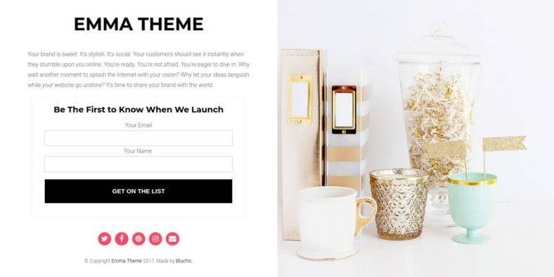 Emma - 37+ Amazing Best WordPress Landing Page Themes [year]
