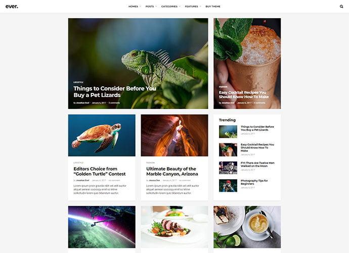 Ever - 33+ Stunning Minimalist Magazine, Newspaper WordPress Themes [year]
