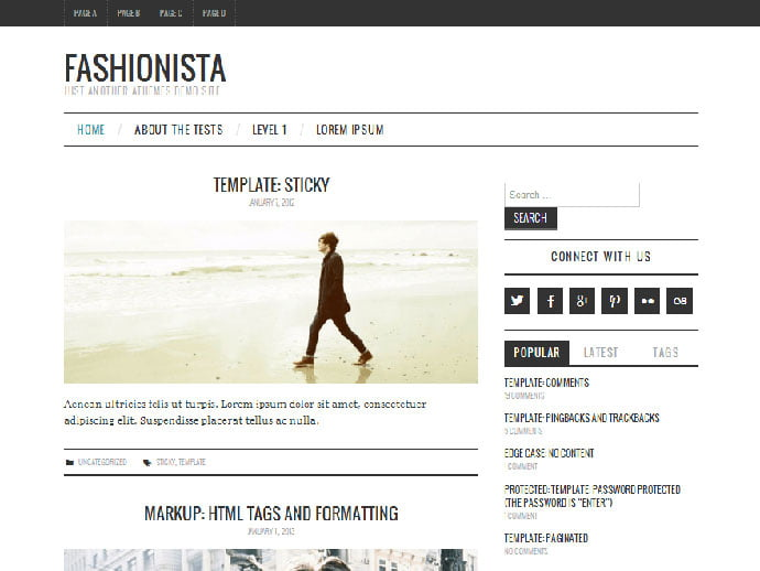 Fashionistas - 61+ Free Creating Responsive WordPress Themes [year]