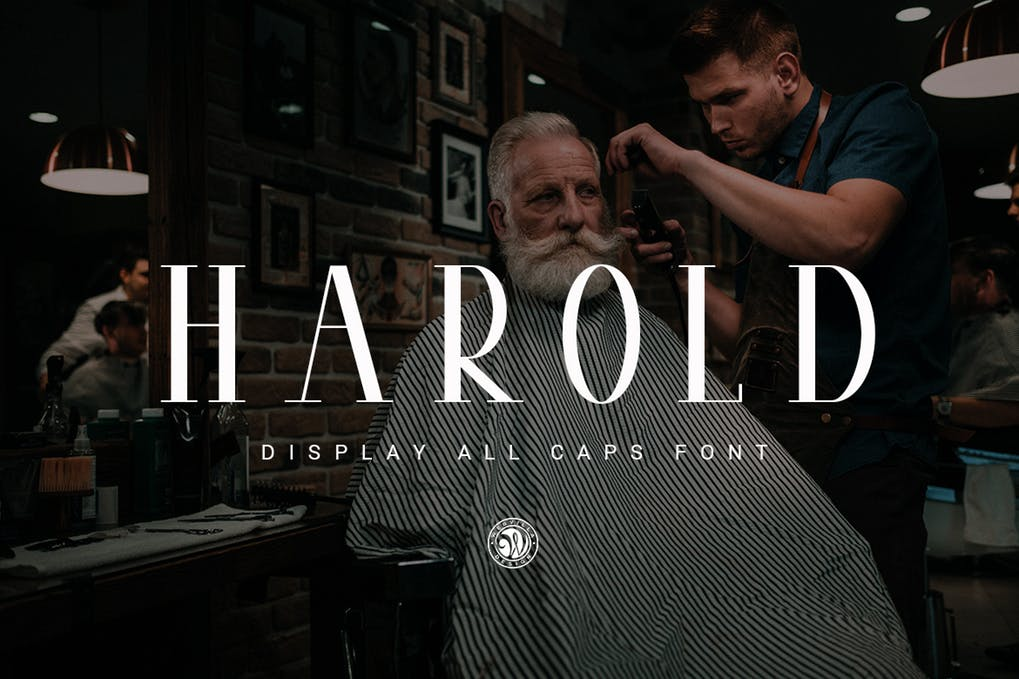 Harold - 51+ All Caps Fonts For Your Unique Personality Headline Website [year]