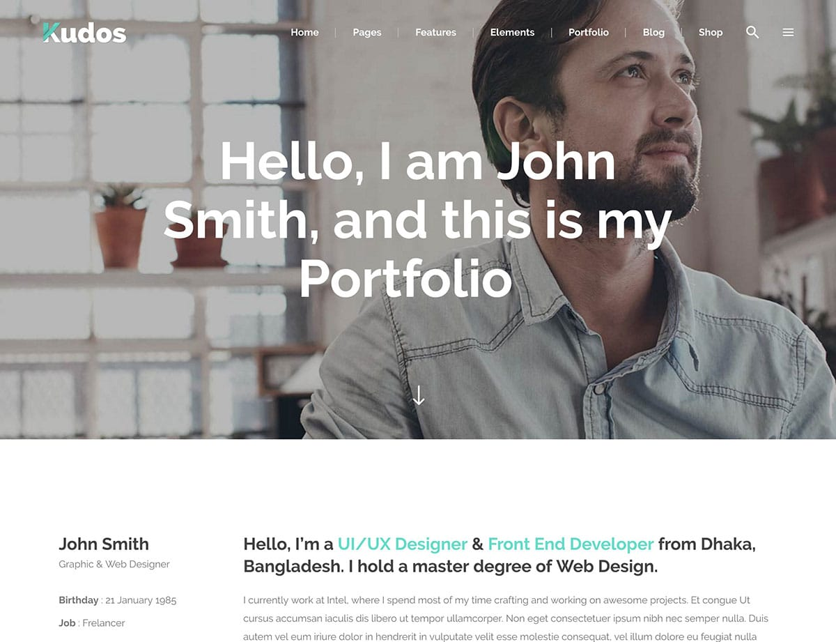 Kudos - 31+ Best Freelancers WordPress Themes [year]