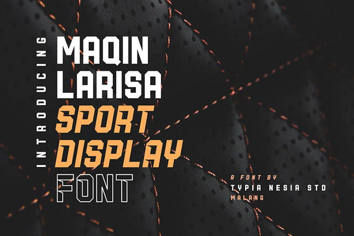 Maqin-Larisa - 30+ Awesome BEST Square based Geometric Fonts [year]