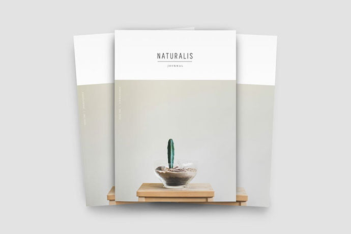 NATURALIS - 50+ Awesome Interior Magazine InDesign Templates [year]