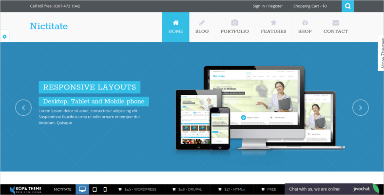 Nictitate - 41+ Awesome Responsive HTML5 Web Templates [year]