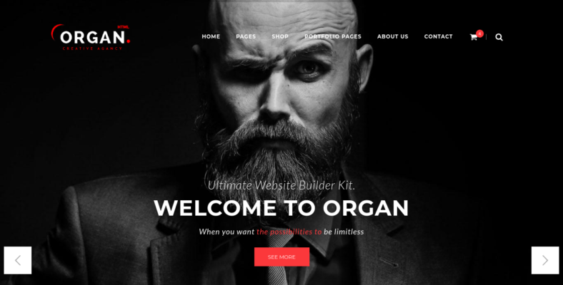 Organ - 41+ Awesome Responsive HTML5 Web Templates [year]