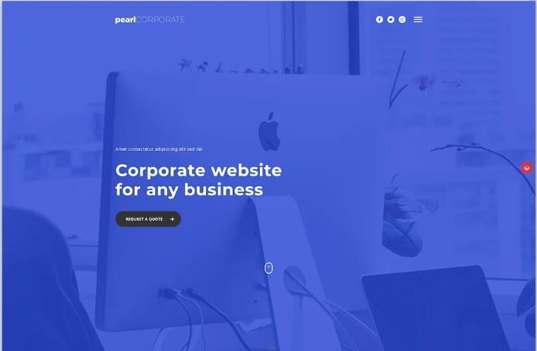Pearl - 34+ Awesome Mobile First Free & Premium AMP Themes [year]