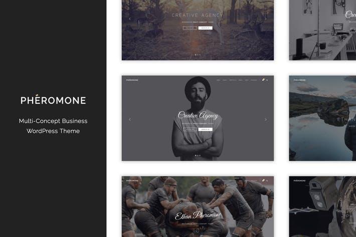 Pheromone - 50+ Best Portfolio WordPress Theme Design [year]
