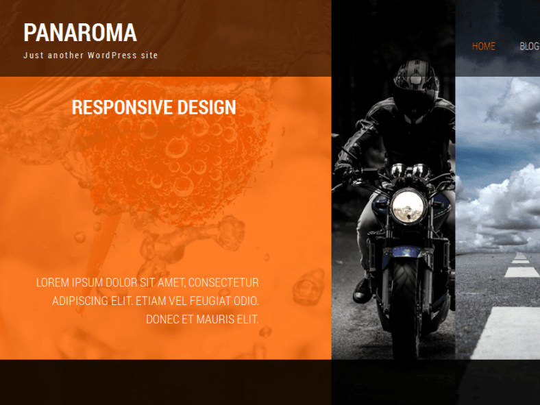 Photography - 41+ Awesome Responsive HTML5 Web Templates [year]
