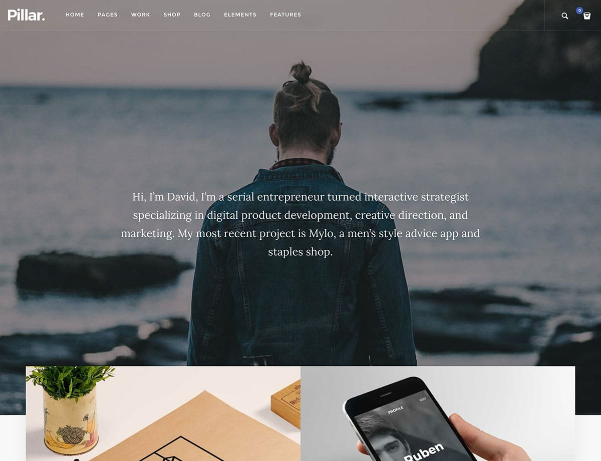 Pillar - 31+ Best Freelancers WordPress Themes [year]
