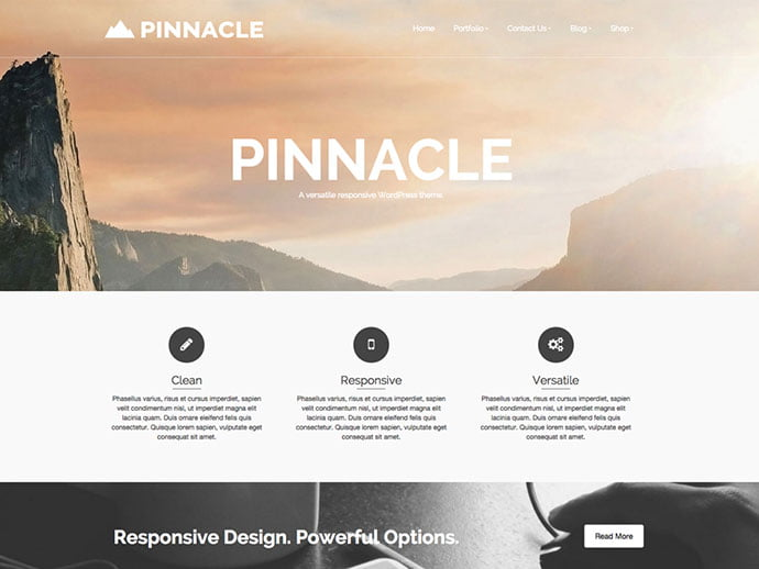 Pinnacle - 61+ Free Creating Responsive WordPress Themes [year]