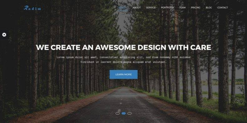 Radim - 36+ Best One Page Modern and Creative HTML Templates [year]