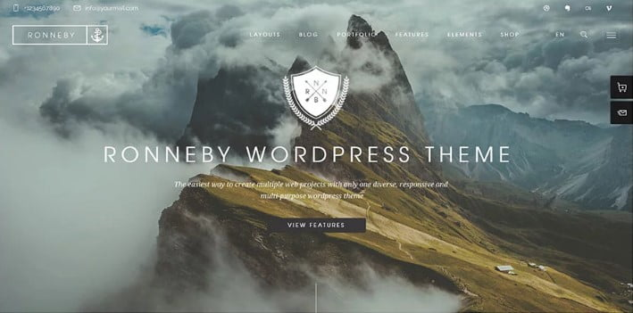 Ronneby - 31+ Amazing WordPress Themes for Programmers [year]