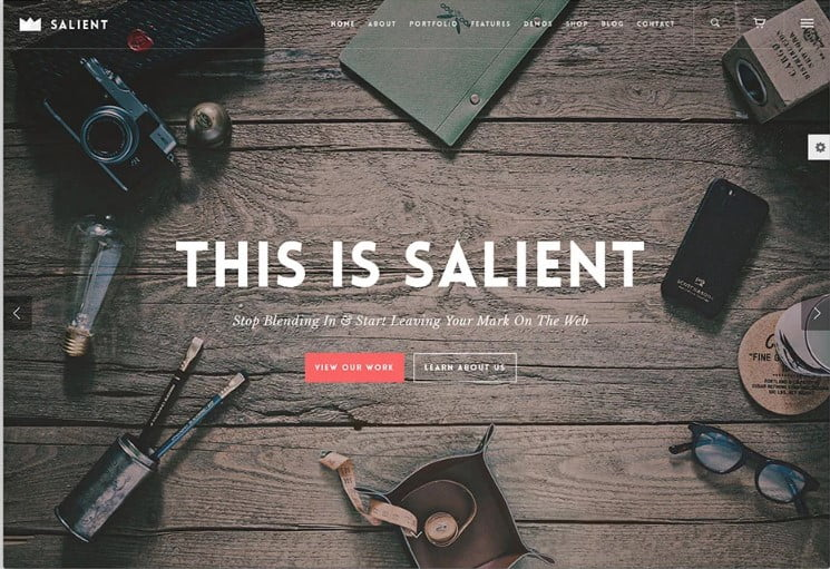 Salient - 31+ Amazing WordPress Themes for Programmers [year]