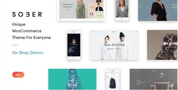 Sober - 31+ Multicolor WordPress eCommerce Themes [year]