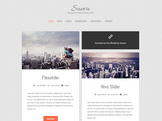 Sueva - 61+ Free Creating Responsive WordPress Themes [year]