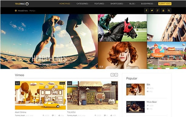 TrueMag - 31+ Top WordPress Themes For Best Adsense Optimized [year]