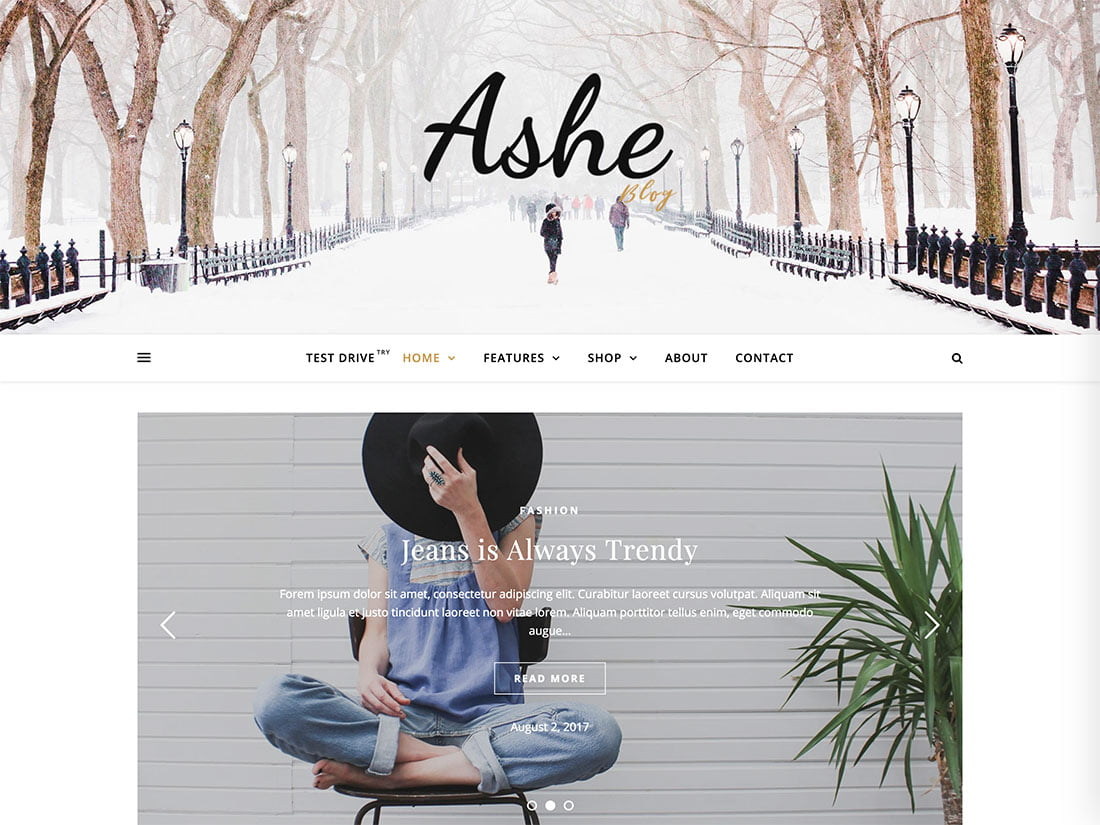 Ashe - 43+ Top Free WordPress Blog Themes [year]