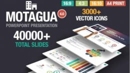 Best Selling PowerPoint Templates