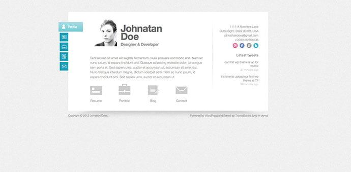 Biopic - 34+ Marvelous WordPress Resume Themes [year]