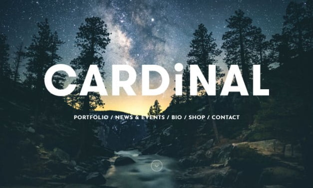 Cardinal-2 - 31+ Top WordPress Themes For Landscape Photography Portfolio [year]