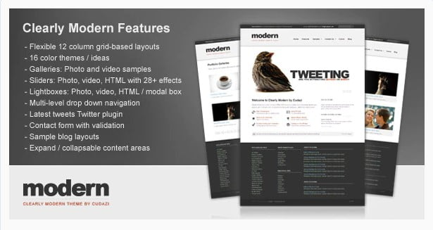 Clearly-Modern - 36+ Amazing Tumblr Style WordPress Themes For Developer [year]