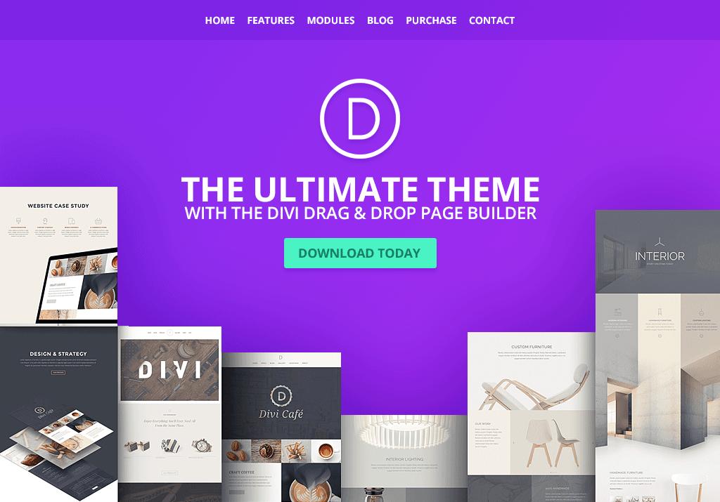 Divi - 41+ Stunning Responsive Music Website Templates [year]