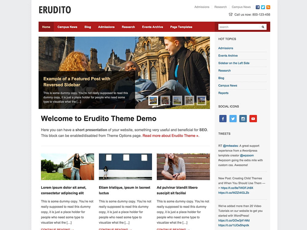 Erudito - 51+ Top Best WordPress Themes For Education [year]