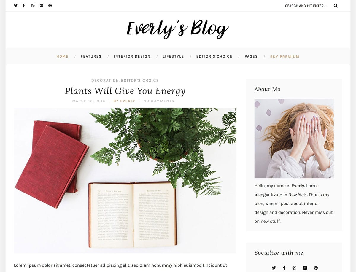 Everly-Lite - 43+ Top Free WordPress Blog Themes [year]