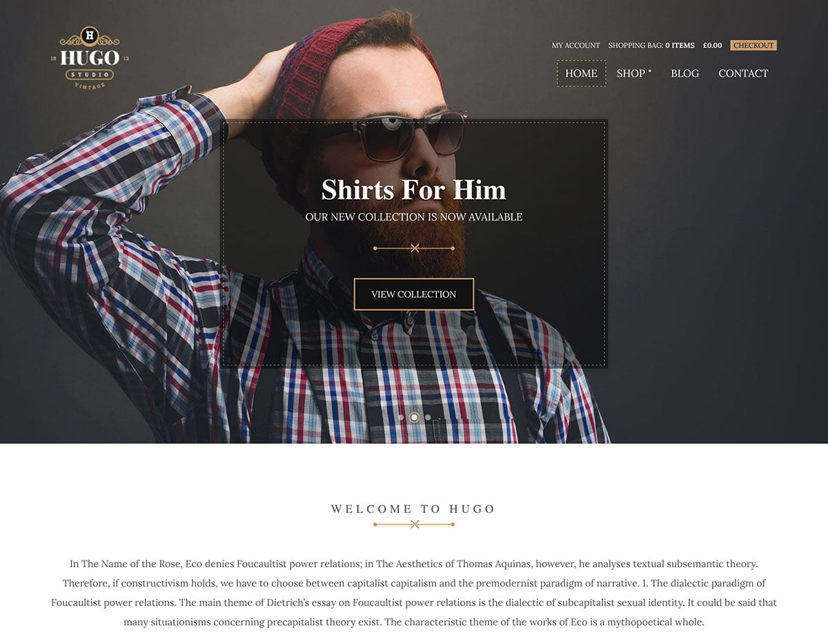 Hugo - 46+ Top Best WordPress Themes For Ecommerce [year]