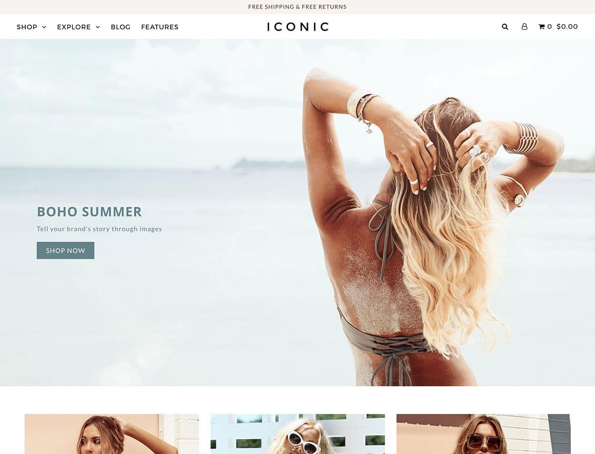 Icon - 41+ Awesome Shopify Themes For Your Business [year]