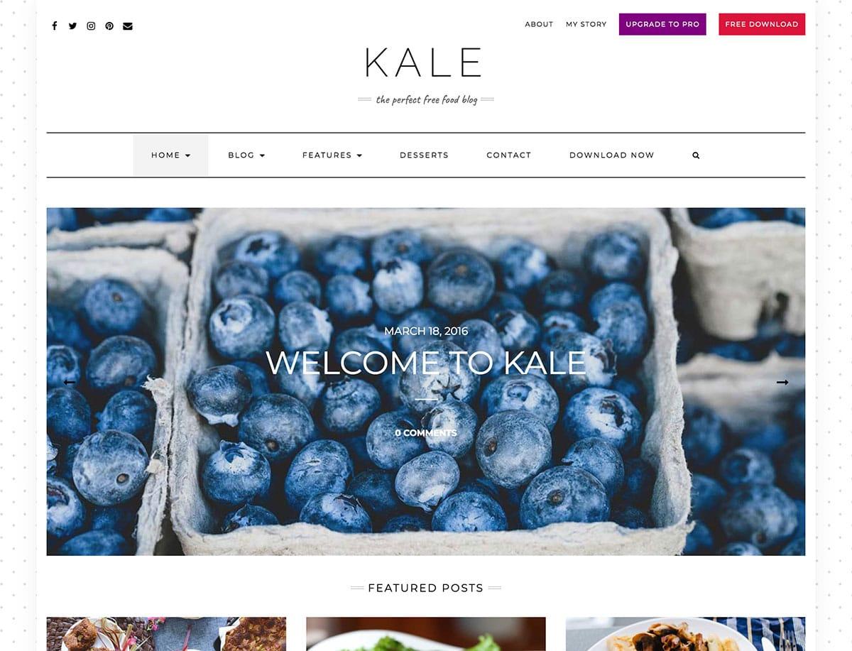 Kale - 43+ Top Free WordPress Blog Themes [year]