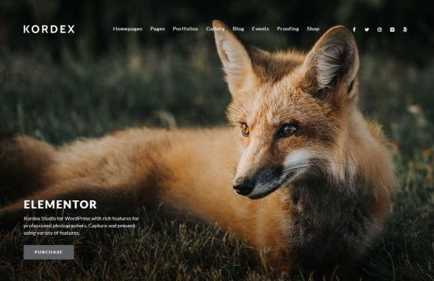 Kordex - 31+ Top WordPress Themes For Landscape Photography Portfolio [year]