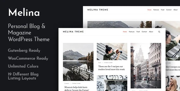 Melina - 36+ Inspiring Best Coaching WordPress Themes [year]