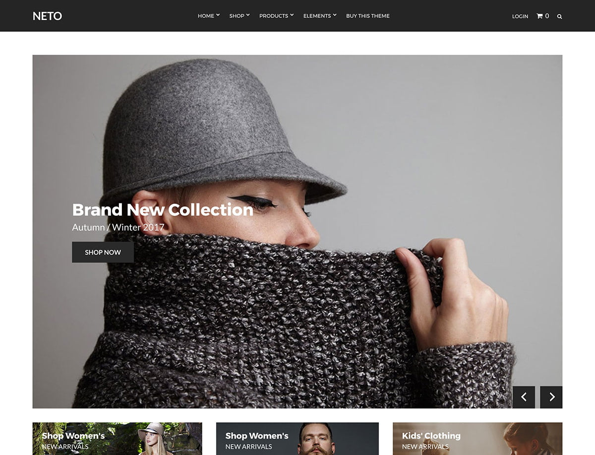 Neto - 46+ Top Best WordPress Themes For Ecommerce [year]