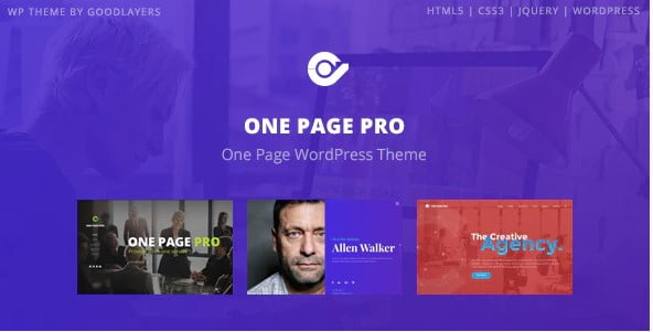One-Page-Pro - 31+ Top WordPress Themes For vCard [year]
