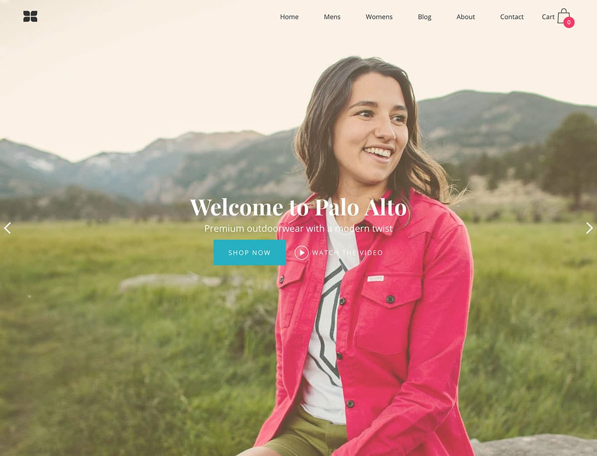 Palo-Alto - 41+ Awesome Shopify Themes For Your Business [year]