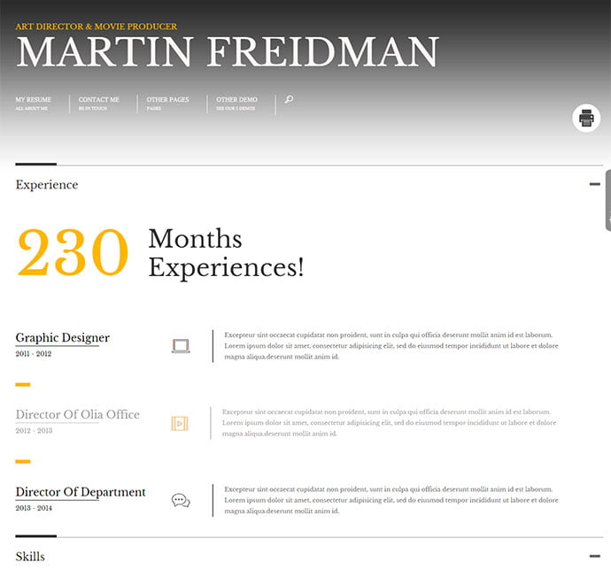 Promotion - 34+ Marvelous WordPress Resume Themes [year]