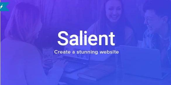 Salient - 41+ Awesome Logo Designer WordPress Themes [year]