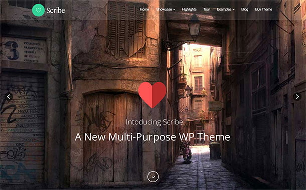 Scribe - 31+ Top WordPress Themes For Drag and Drop [year]
