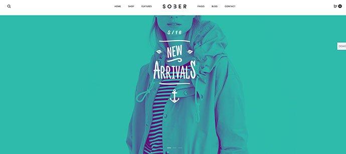 Sober - 36+ Wonderful Gradients Designs WordPress Theme [year]